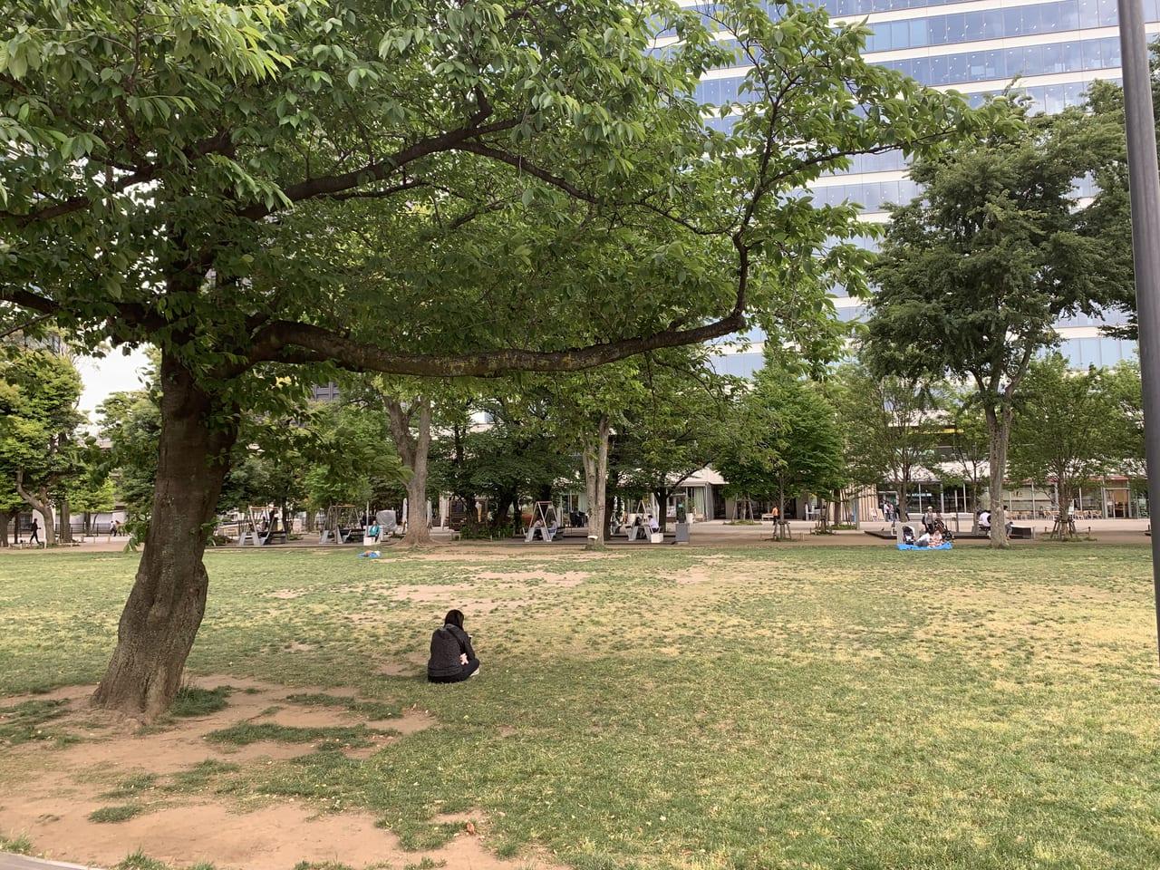 セントラルパークの緑