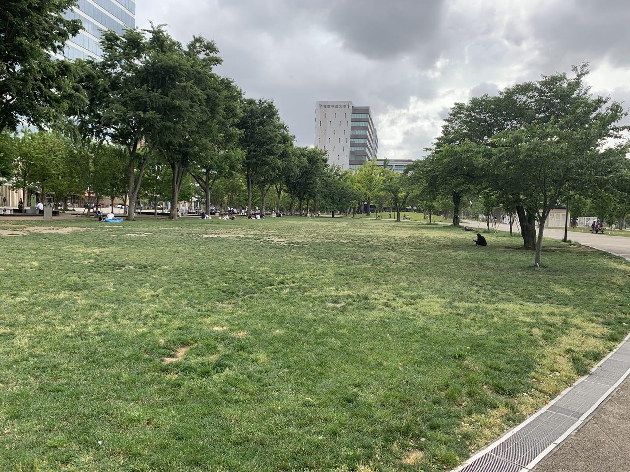 セントラルパーク芝生