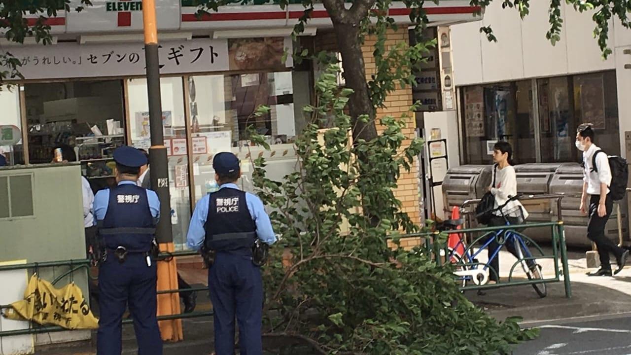 中野通りで倒木警察出動